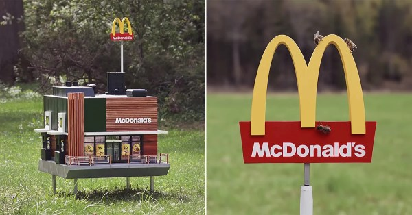 mcdonald's opens world's smallest restaurant for bees
