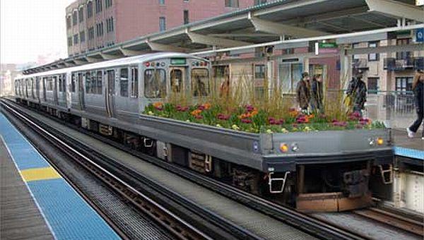 mobile garden rail car