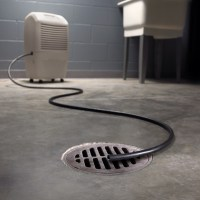 How to Deal with the Basement Humidity