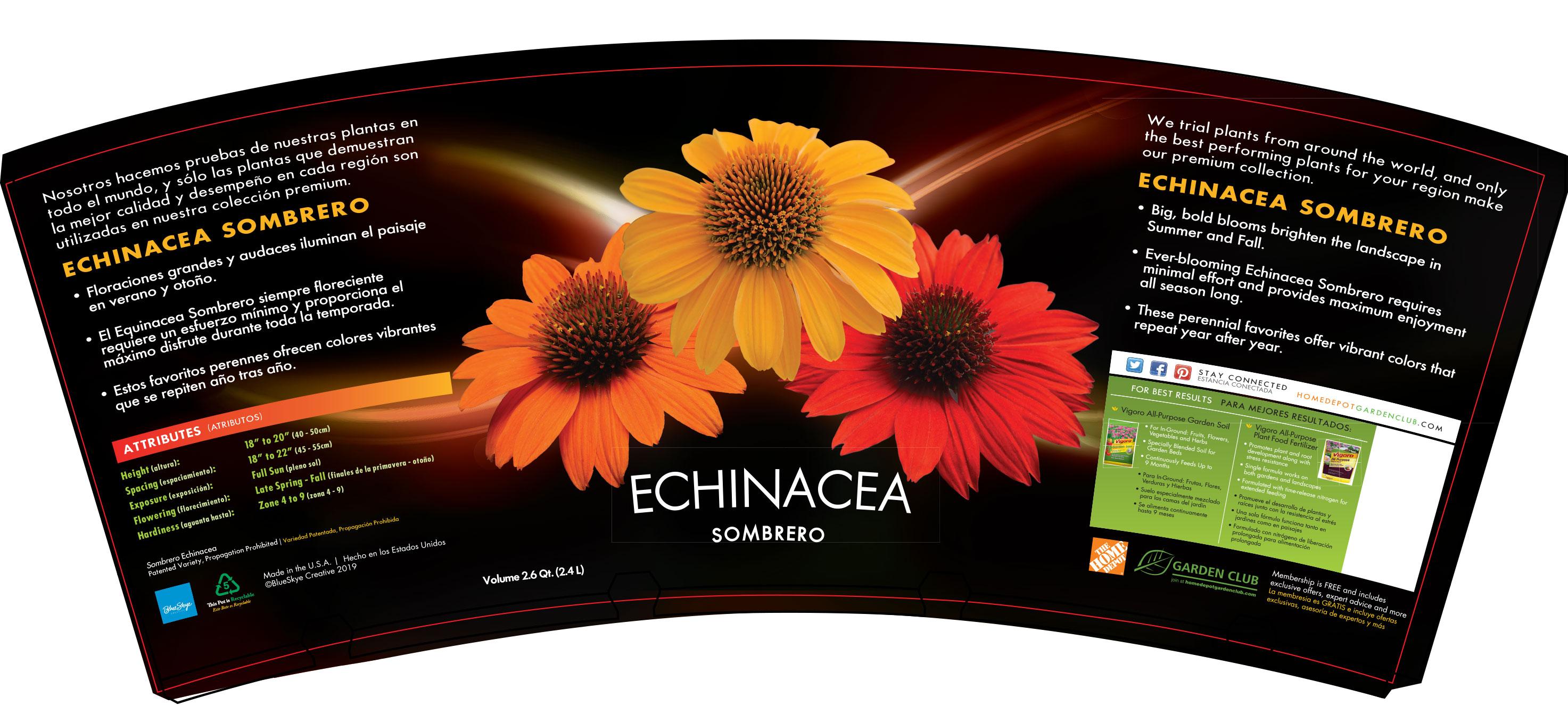 Echinacea-Sombrero-Spring-Mix