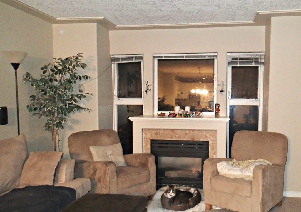 Before Greg's Condo livingroom