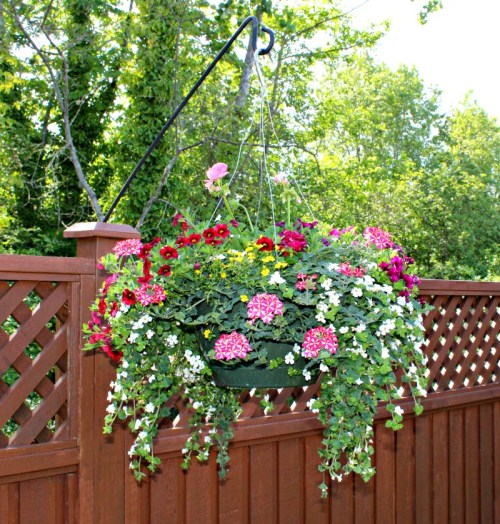 Add a pop of instant colour with a hanging basket. I love this hook for the planter