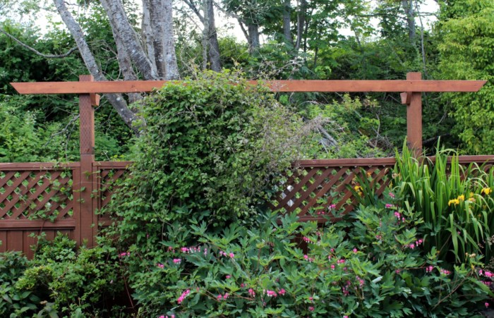 Add a trellis to your existing fence. This is added to a standard 8' wide pre-fab cedar fence panel. #trellis