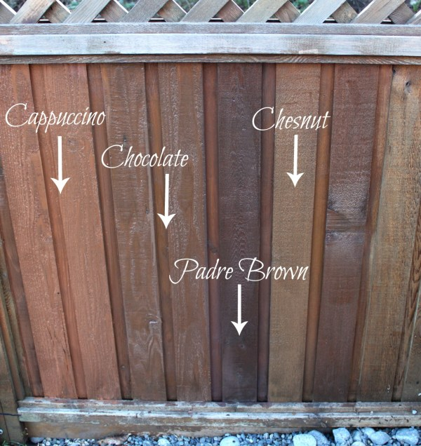 Staining my fence with Behr semi-transparent stain samples in cappuccino, chocolate, chesnut, and padre brown for comparison