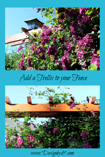Add a trellis to your existing fence. This is added to a standard 8' wide pre-fab cedar fence panel. #trellis clematis