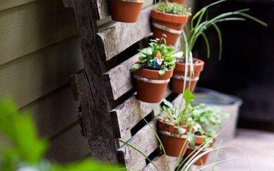 Tuin trends: Verticaal Tuinieren
