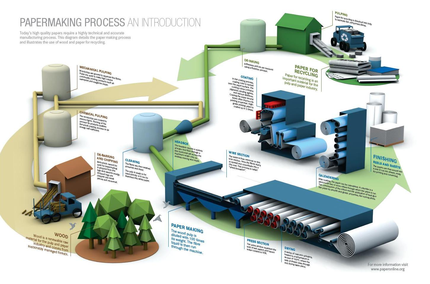 Papermaking Process Infographic