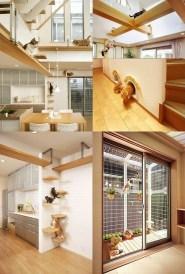 Espaços adaptados para gatos