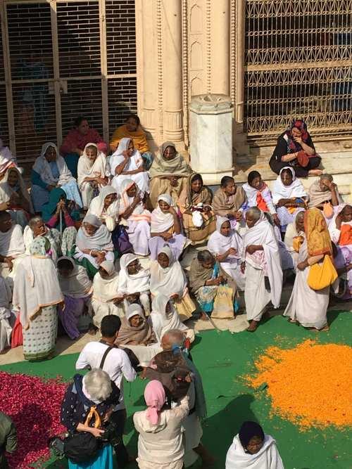 Widows at the Holi Festival