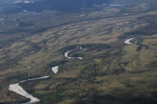 Winding river, tundra/spruce forests
