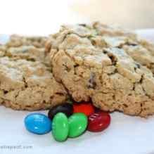 Monster Cookies: My Long Lost Love