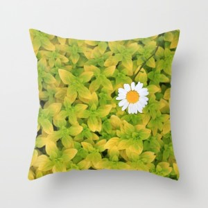 daisy-flower-reaching-for-the-sun-8z9-pillows