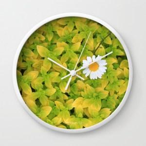 daisy-flower-reaching-for-the-sun-8z9-wall-clocks