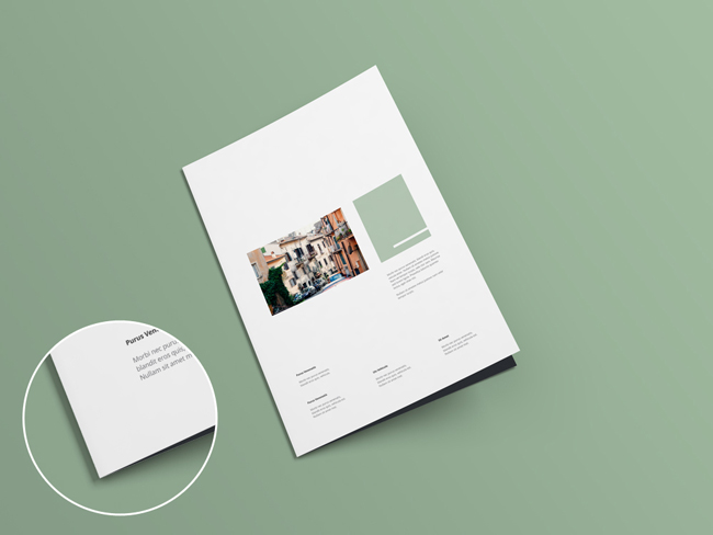 Bi-Fold-Brochure