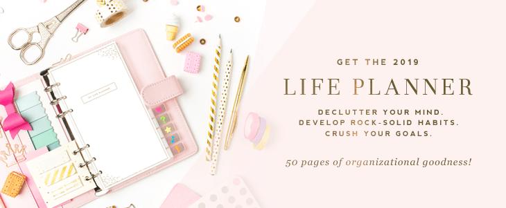 2019 Life Planner - DesignerBlogs.com