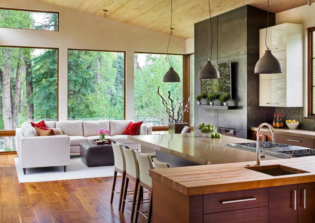 joe, colorado contemporay living room