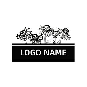Free Name Logo Maker Beautiful Name Designs Designevo