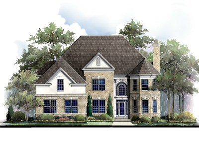 Yancy elevation rendering