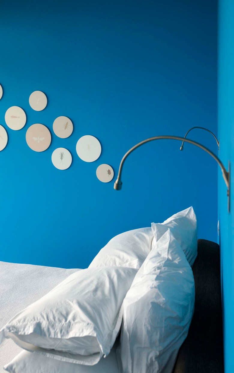 Pattersons modern house vibrant bedrooms