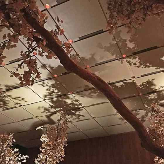 Four Seasons Restaurant ceiling shadows before closing