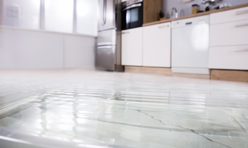 How Detect Hidden Water Damage Your House Interior Design News And