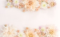 about Desktop Backgrounds on Pinterest | Wallpapers, Ipad ...