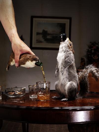 Ερμίνες, σκίουροι και ένας λαγός χρησιμοποιήθηκαν για να ντύσουν τα μπουκάλια