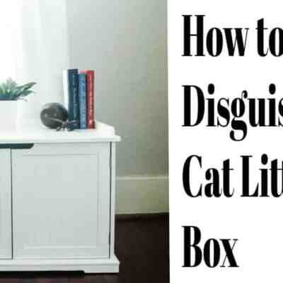 How to Disguise a Litter Box