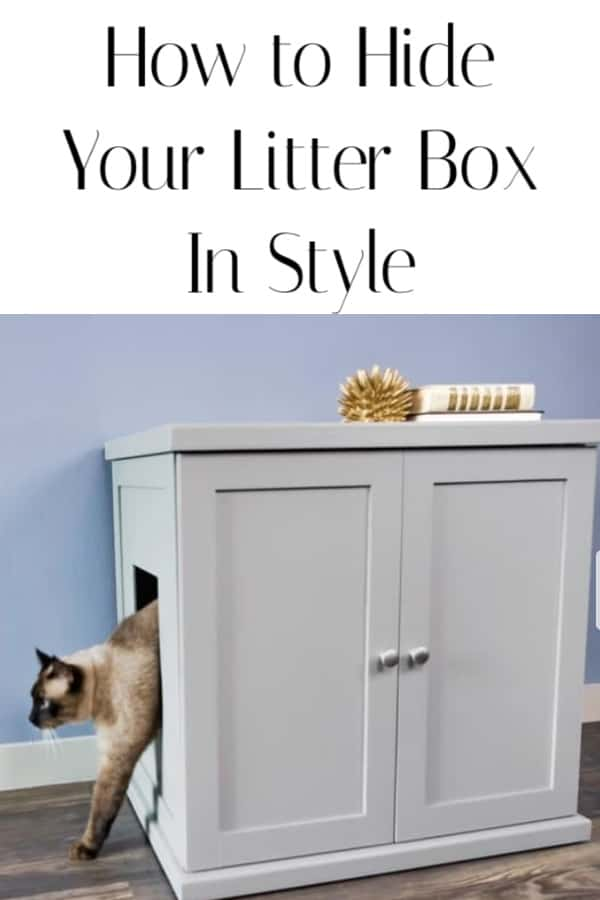 How to hide a cat litter box in your home