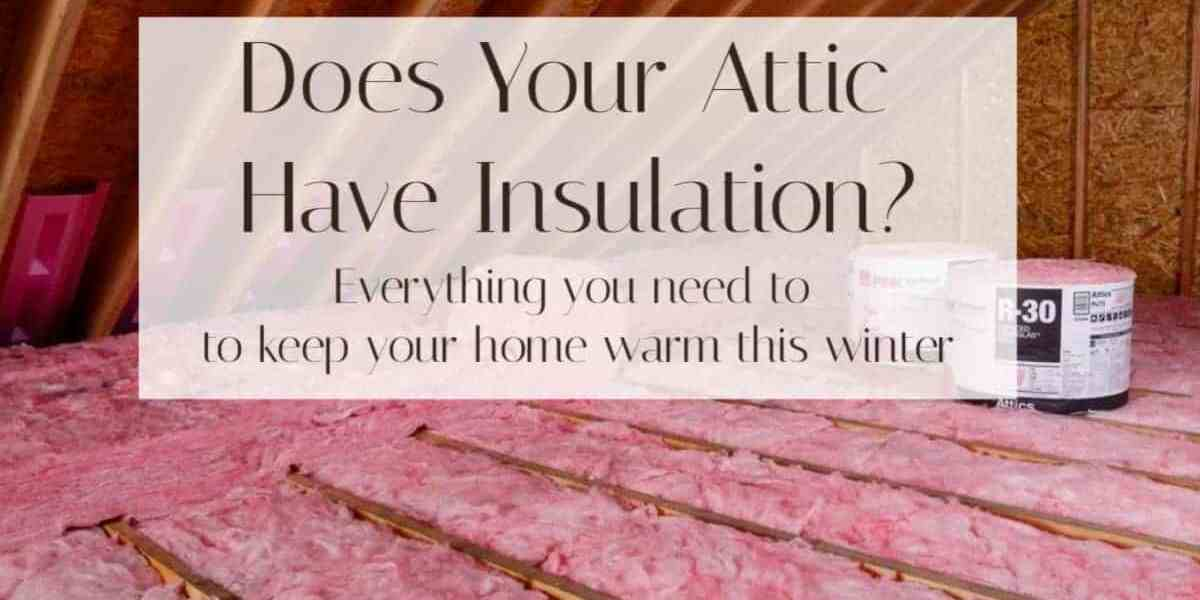 Best Attic Insulation