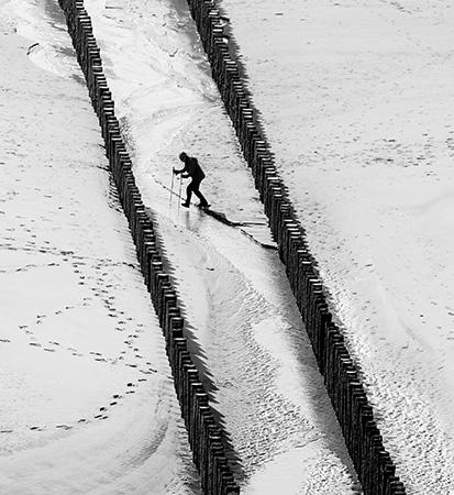 © Tim van Eennennaam