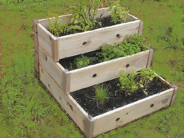 Container Herb Garden Design