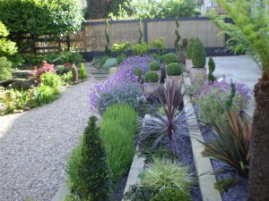 Contemporary Front Garden Design PLaD