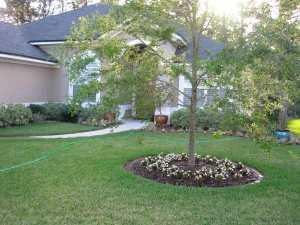 Front Yard Garden Design VOdB