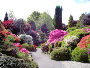 Garden Design Free UCBy