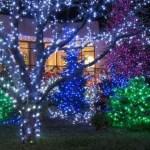 Outdoor Christmas Lights Ideas YtCu