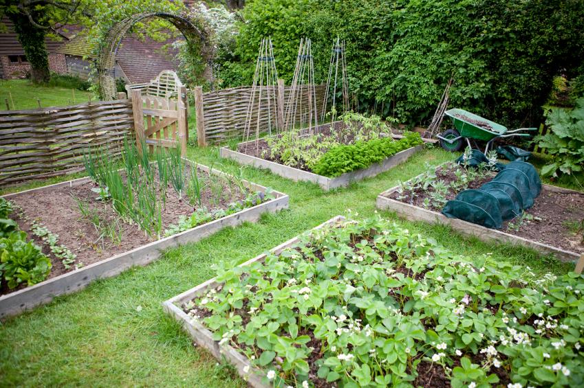 Raised Herb Garden Design Svph Design On Vine