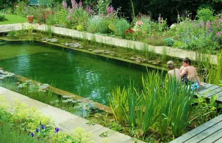 Swimming Pools Water
