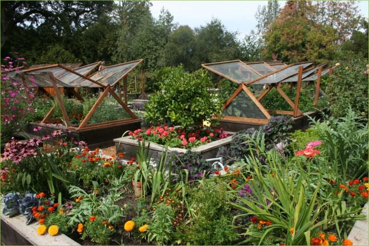 Vegetable Garden Bed Design