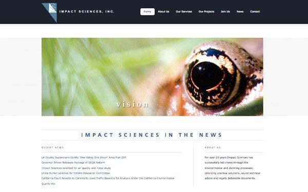 WordPress Customization - Impact Sciences
