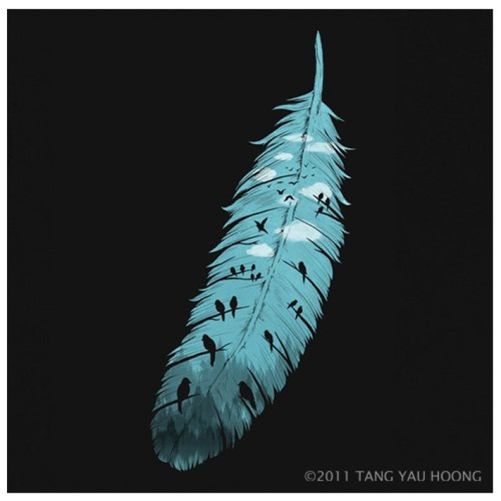 Feather-of-Life-Tang-Yau-Hoong-wp
