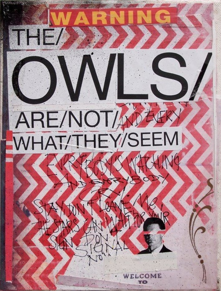 The-owls-are-not-what-they-seem