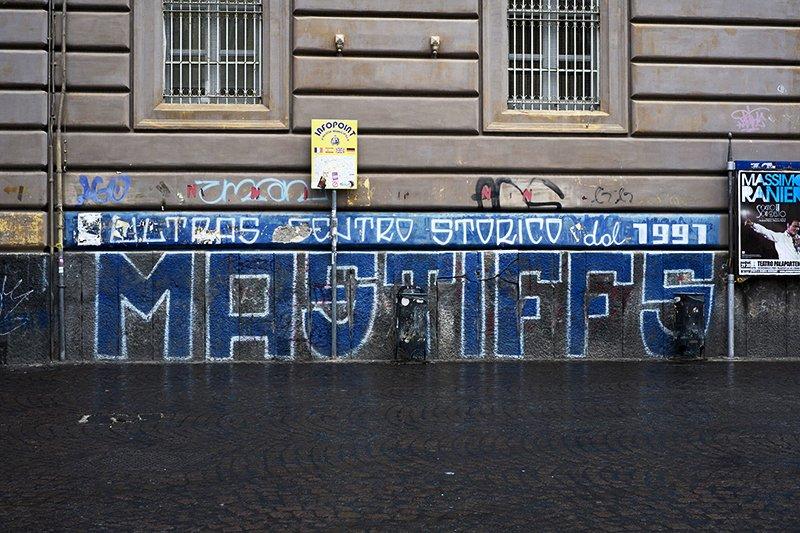 Dante_Corsetti_Mastiffs_NPS_13
