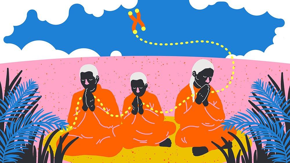 1.HERO- teleomers and Blackburn by SaraAndreasson_Meditation