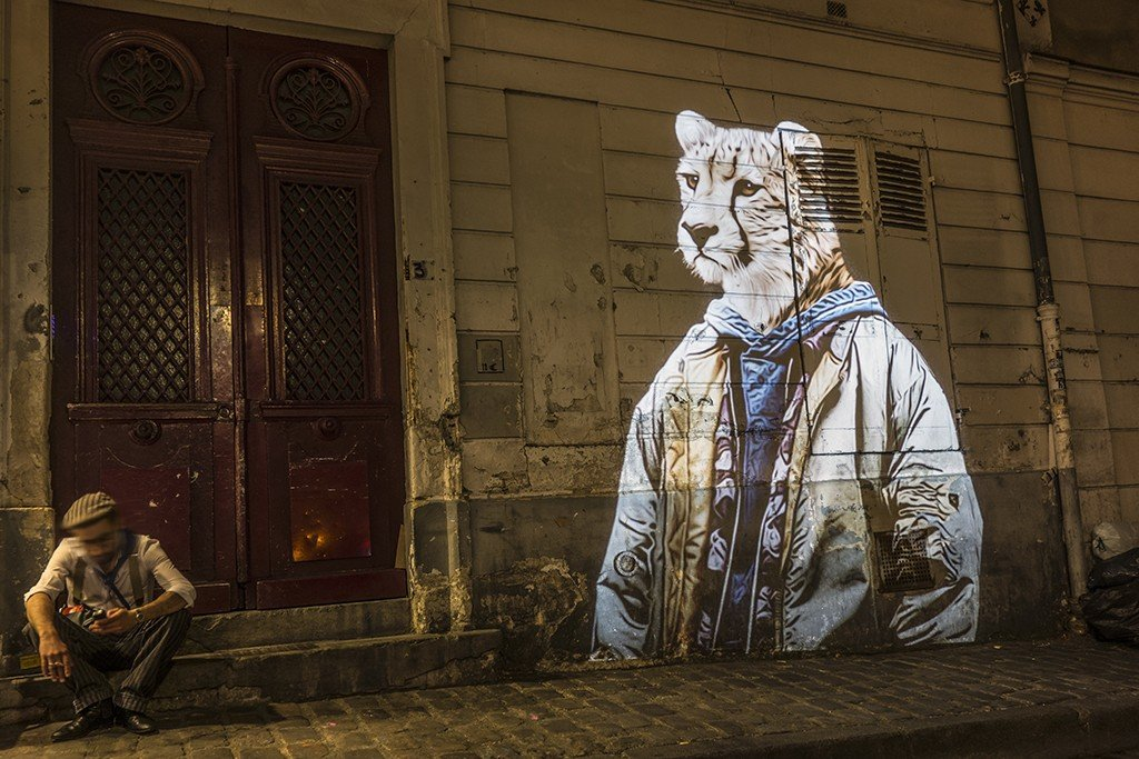 Le Guépard du Tertre / The Sheetah of Montmartre // 2015 © Julien NONNON