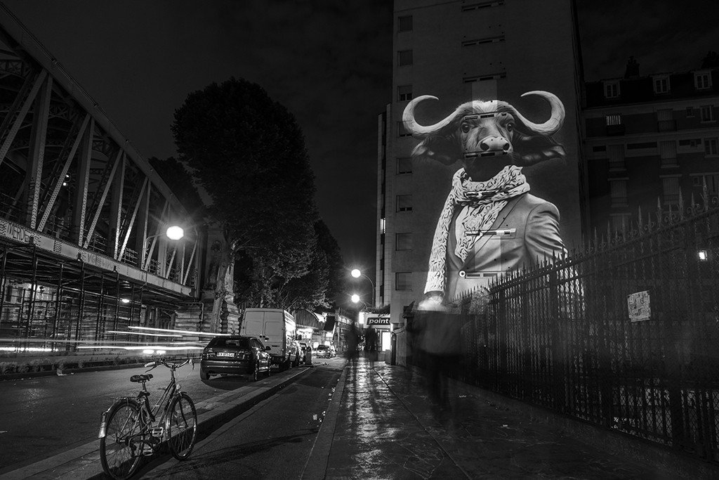 Le Buffle de la Chapelle / The Buffalo of La Chapelle // 2015 © Julien NONNON
