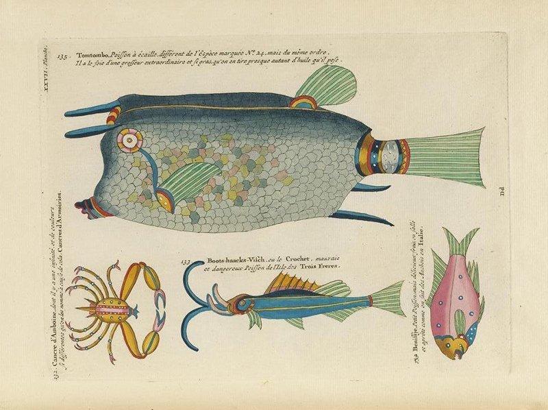 Poissons, ecrevisses et crabes. Il primo libro illustrato a colori sul mondo ittico