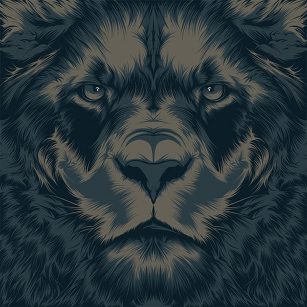 lion Spanish Design Inspiration