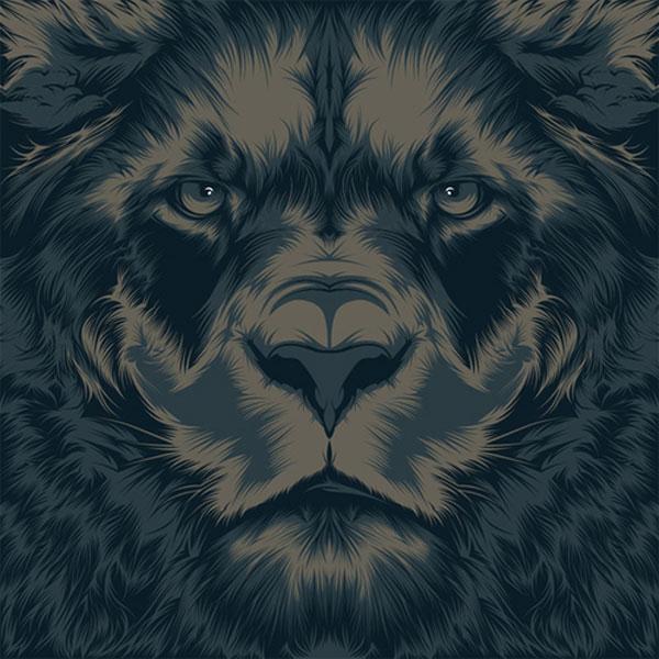 lion Spanish Design Inspiration