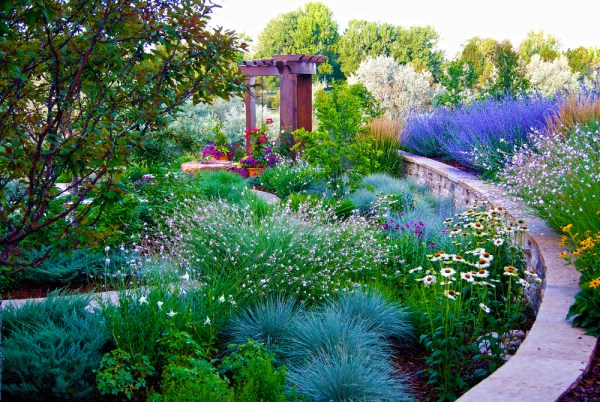 denver lawn maintenance and garden